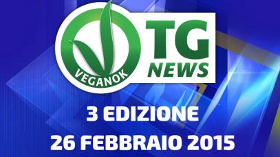 2 EDIZIONE19 FEBBRAIO 2015(3)