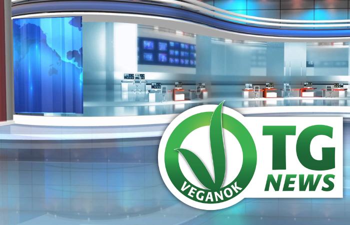 VEGANOK TG News