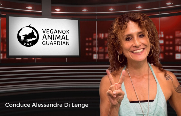VEGANOK Animal Guardian