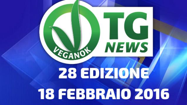 16 EDIZIONE28 MAGGIO 2015(12)
