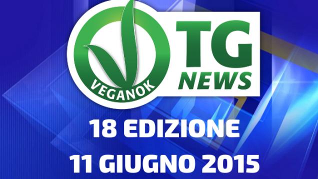 16 EDIZIONE28 MAGGIO 2015(2)