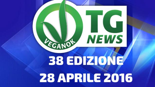 16 EDIZIONE28 MAGGIO 2015(24)