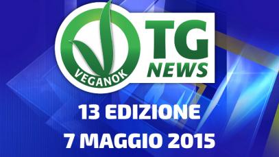 2 EDIZIONE19 FEBBRAIO 2015(18)