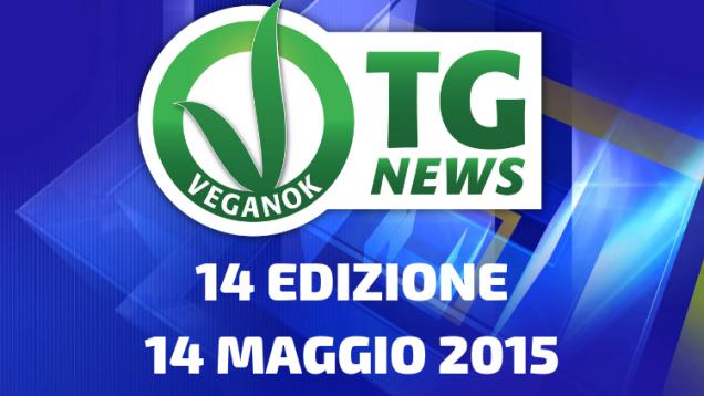 2 EDIZIONE19 FEBBRAIO 2015(19)