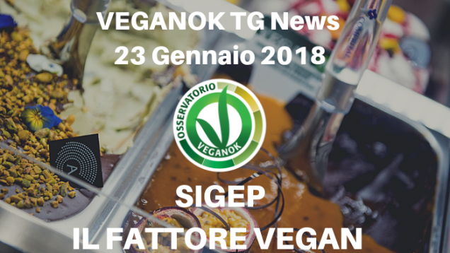 VEGANOK TG News (14)