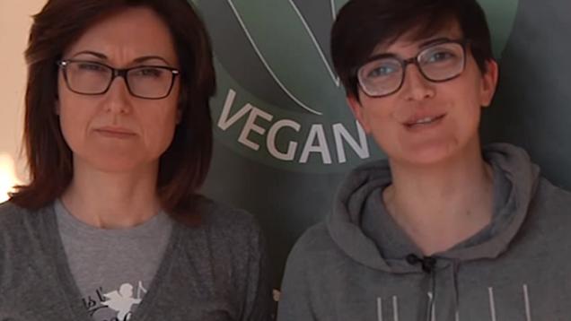 veganok (10)
