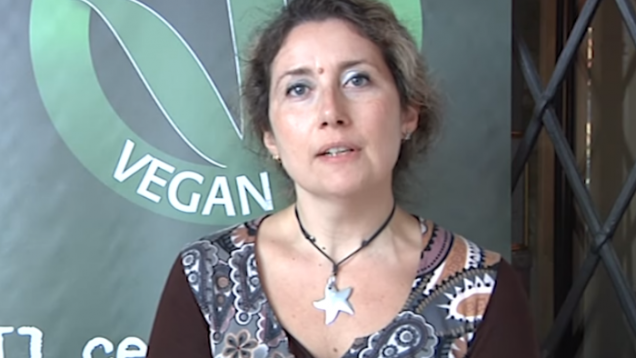 veganok (13)