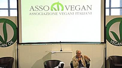 veganok (81)
