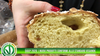 sigep 2020 veganok