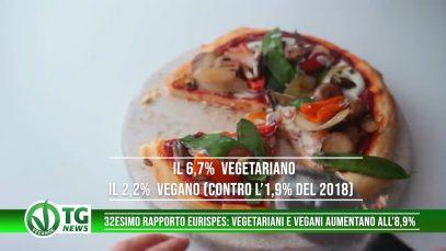 veganok tg 78