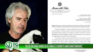 Tullio Solenghi borrello